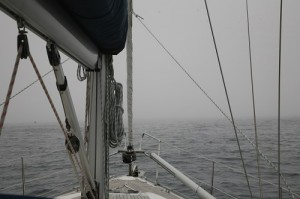 Nebel_auf_See1