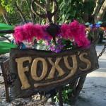 Foxys_Schild