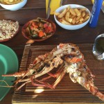 Pinel_Kl_Lobster